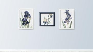 Gallery Plugins